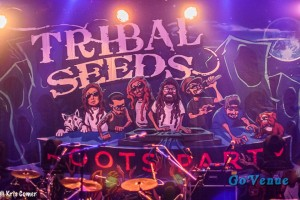 Tribal Seeds sign-1
