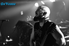 Soulfly 5